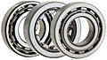 ISO Series Single Row Cylindrical Roller Bearings