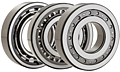 Single Row Cylindrical Roller Bearings - Separable Type
